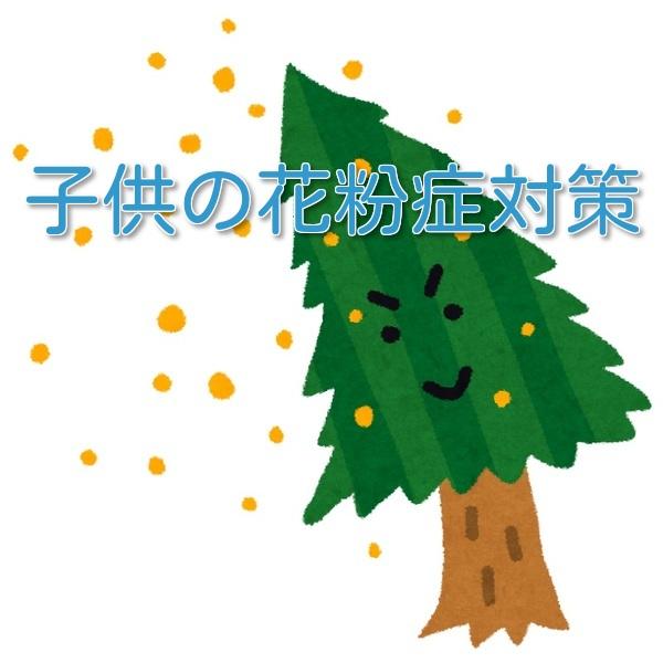 f:id:xiaocaiaya:20180226135715j:plain