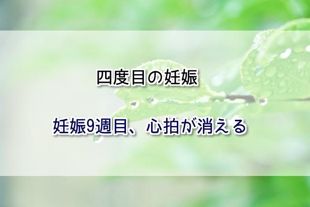 f:id:xiaocaiaya:20190206093604j:plain