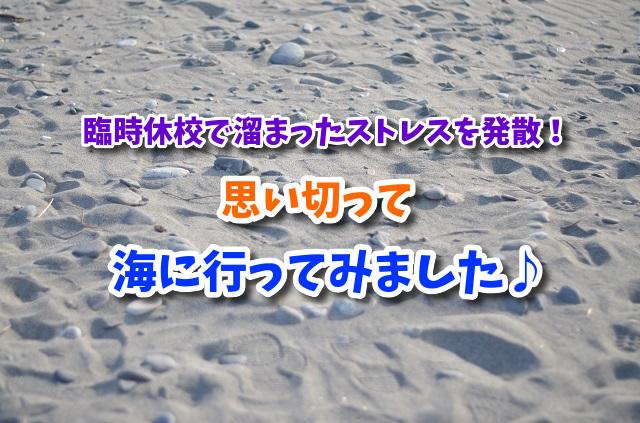 f:id:xiaocaiaya:20200307161018j:plain