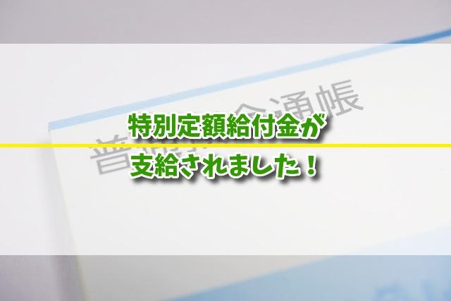 f:id:xiaocaiaya:20200521160010j:plain
