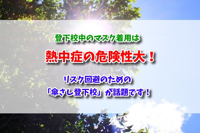 f:id:xiaocaiaya:20200529163054j:plain