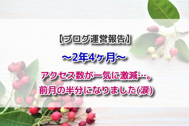 f:id:xiaocaiaya:20200601141434j:plain