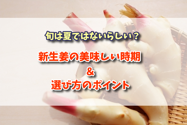 f:id:xiaocaiaya:20200626143053j:plain