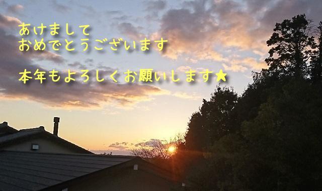 f:id:xiaocaiaya:20210106150513j:plain