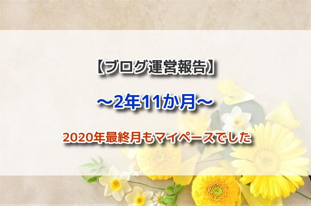 f:id:xiaocaiaya:20210108111348j:plain