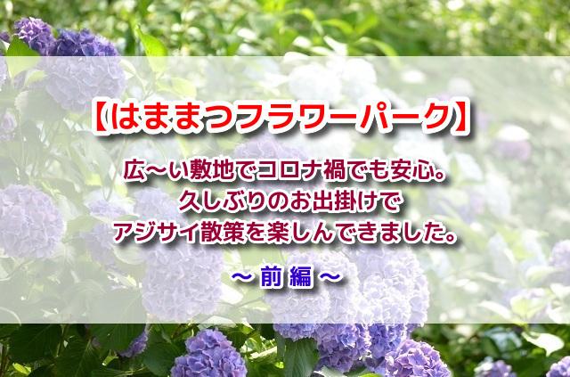 f:id:xiaocaiaya:20210707150310j:plain