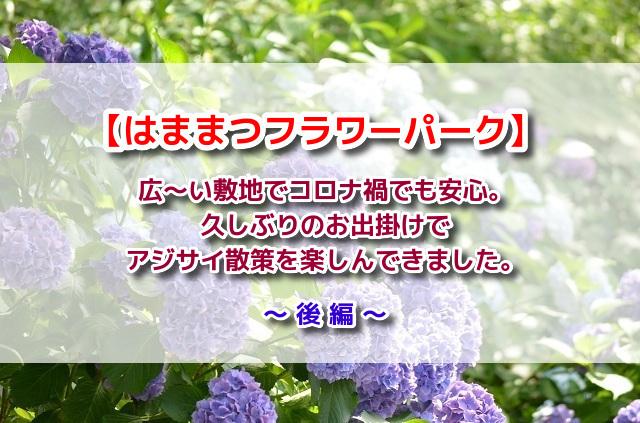 f:id:xiaocaiaya:20210708104953j:plain