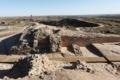 古代遺跡から若い女性の頭蓋骨を大量発掘、いけにえ儀式か中国