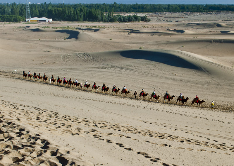 鳴沙山でツアー客らが乗ったラクダの隊列