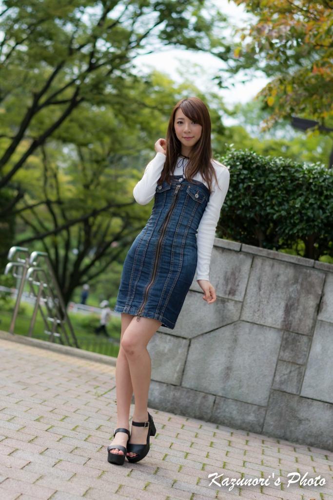 f:id:xiaoyanwu0628:20161103101836j:plain