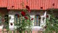 花のみち「ベルサイユのばら」