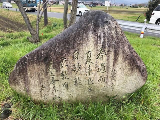 春の藤原京跡