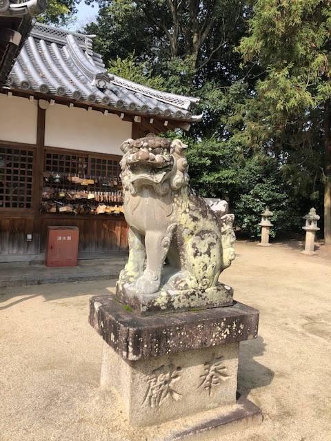 糸井神社 狛犬 阿像
