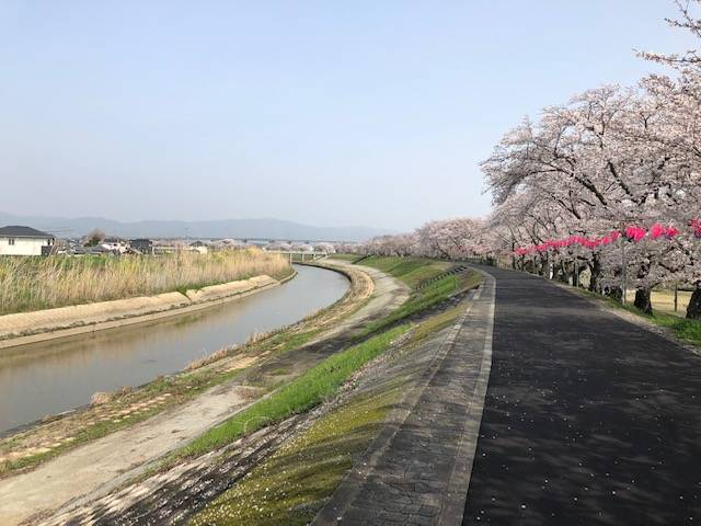 結崎面塚公園