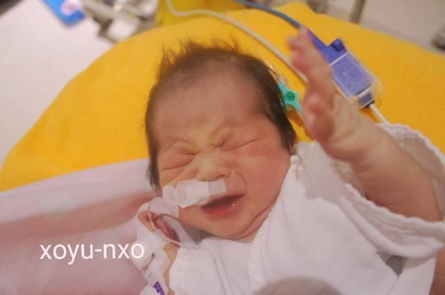 f:id:xoyu-nxo:20200810203132j:image