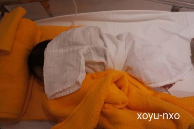 f:id:xoyu-nxo:20200819220406j:image