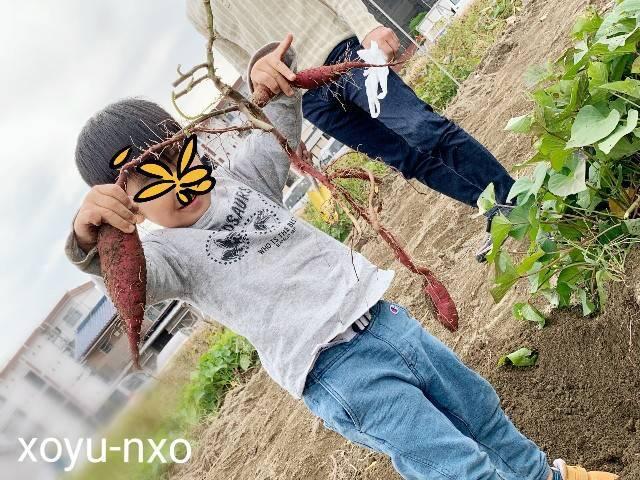 f:id:xoyu-nxo:20201104134906j:image