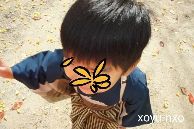 f:id:xoyu-nxo:20201124041808j:image