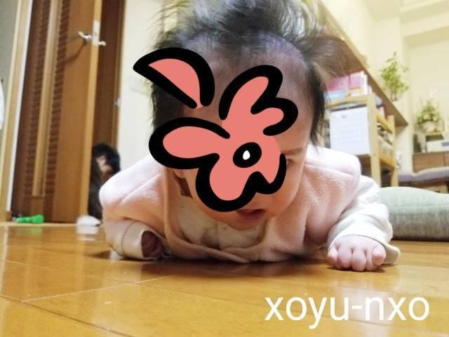 f:id:xoyu-nxo:20201228111707j:image
