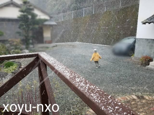 f:id:xoyu-nxo:20210111120434j:image