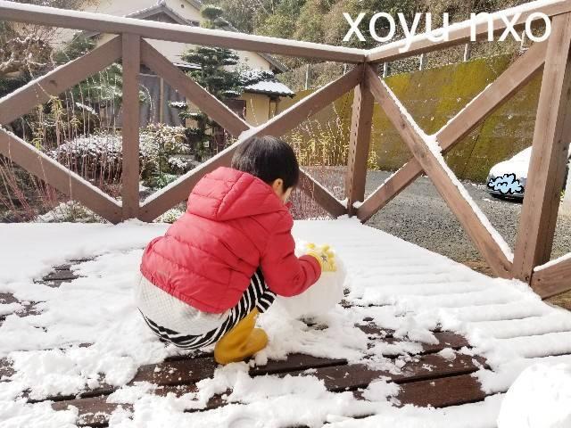 f:id:xoyu-nxo:20210111120445j:image