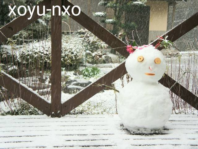 f:id:xoyu-nxo:20210111120519j:image