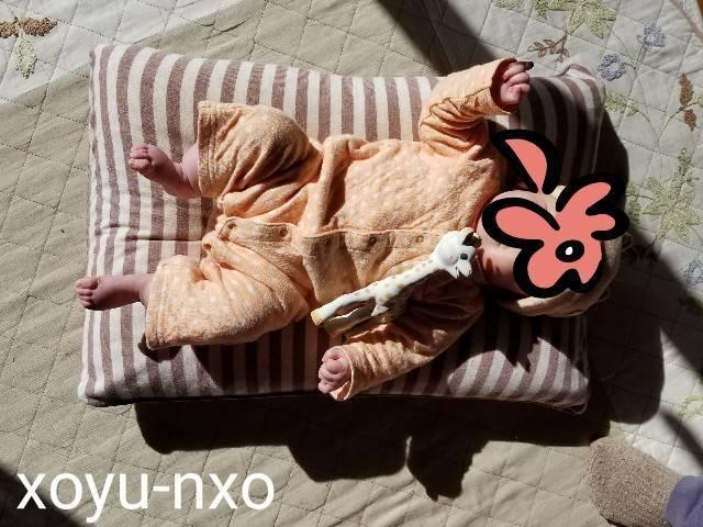 f:id:xoyu-nxo:20210111120557j:image