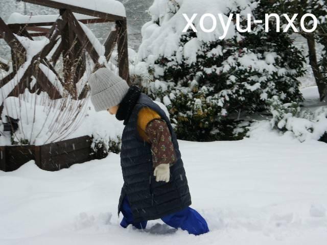 f:id:xoyu-nxo:20210111120617j:image