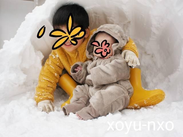f:id:xoyu-nxo:20210111120637j:image
