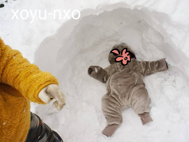 f:id:xoyu-nxo:20210111120646j:image