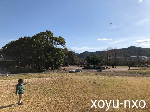 f:id:xoyu-nxo:20210111125131j:image