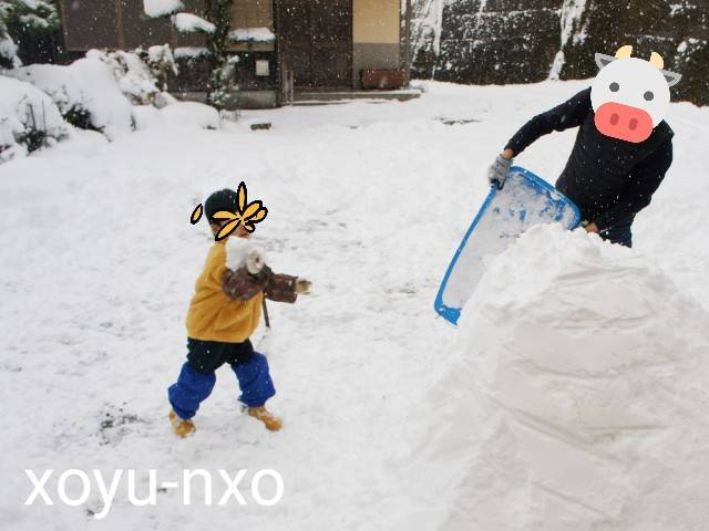 f:id:xoyu-nxo:20210111163621j:image