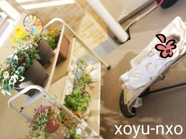 f:id:xoyu-nxo:20210121122240j:image