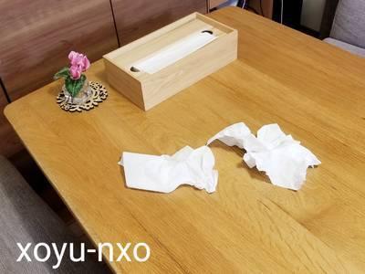 f:id:xoyu-nxo:20210203132353j:plain
