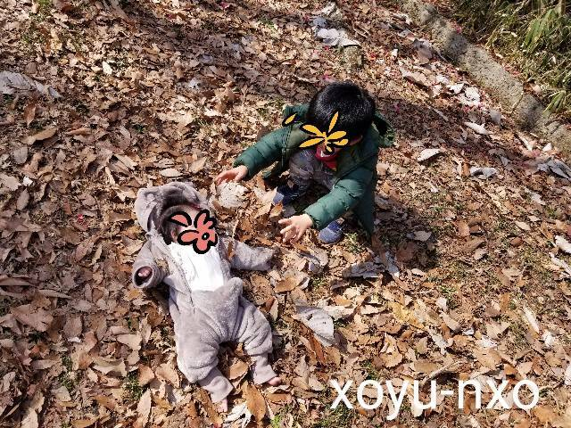 f:id:xoyu-nxo:20210215144025j:image