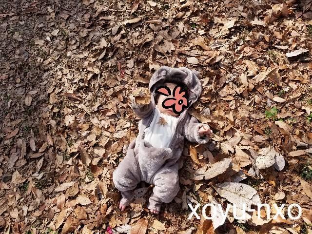 f:id:xoyu-nxo:20210215144040j:image