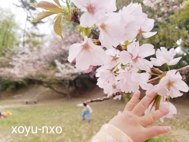f:id:xoyu-nxo:20210501105557j:image