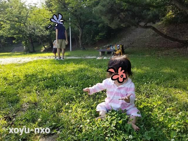 f:id:xoyu-nxo:20210523224332j:image