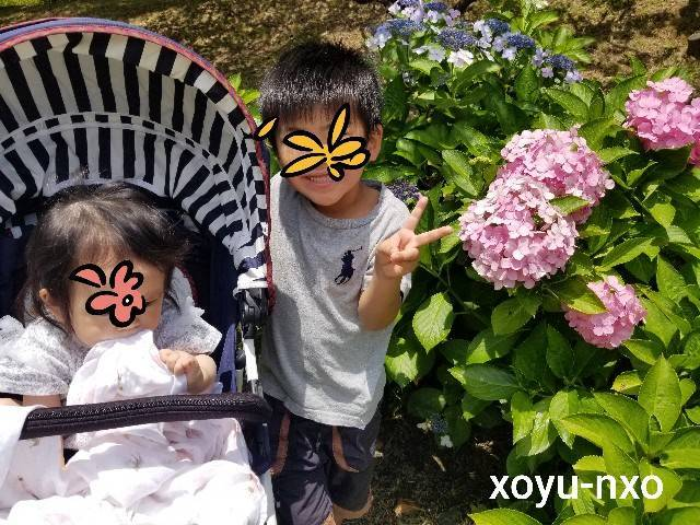 f:id:xoyu-nxo:20210621160428j:image