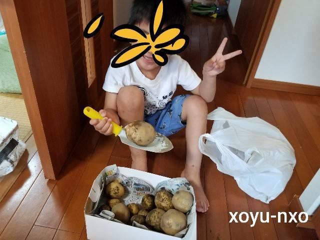 f:id:xoyu-nxo:20210702114541j:image