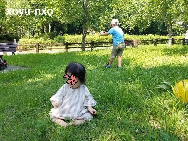 f:id:xoyu-nxo:20210730224804j:image