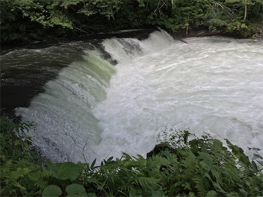 2016年さくらの滝、増水の影響あるかな?