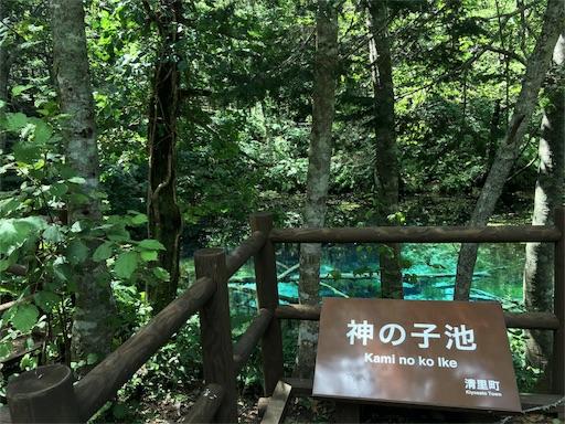 神の子池は増水影響ないですね。柵が出来ました・・・