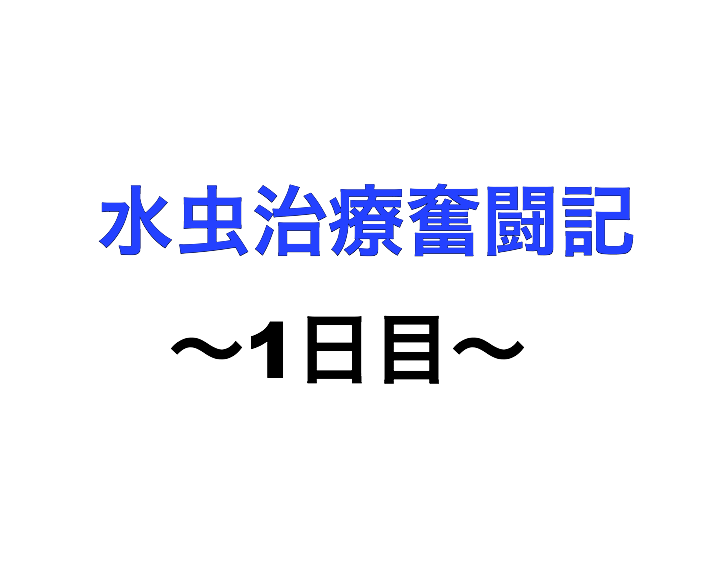 f:id:xxxxkun:20180218092839p:plain