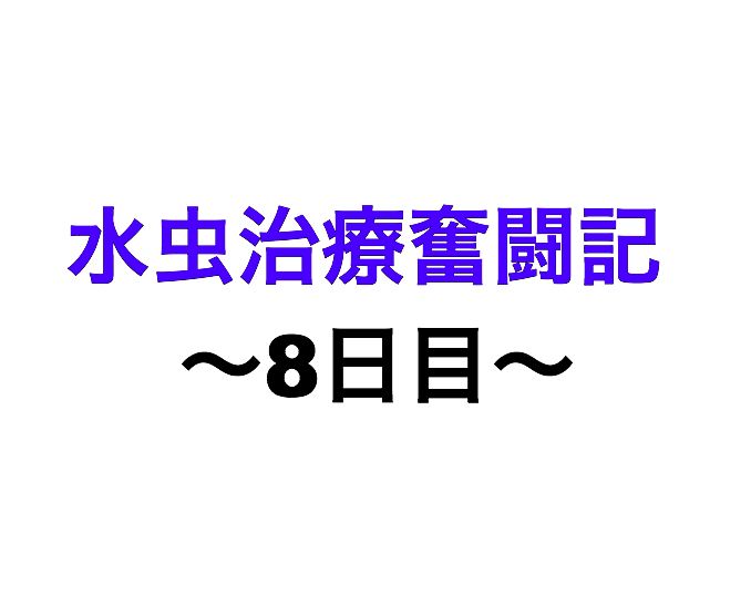 f:id:xxxxkun:20180226100441p:plain