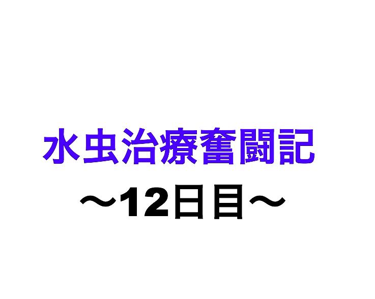 f:id:xxxxkun:20180303085407p:plain