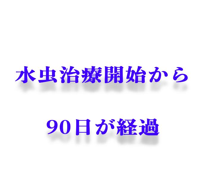 f:id:xxxxkun:20180520152317p:plain