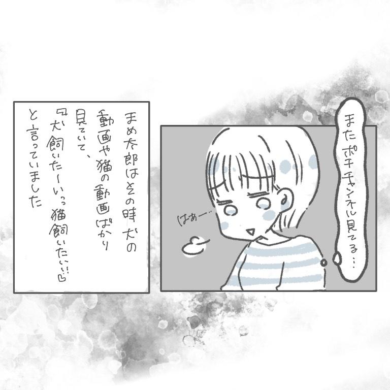 f:id:xybaby_ope_01:20201210104049j:plain