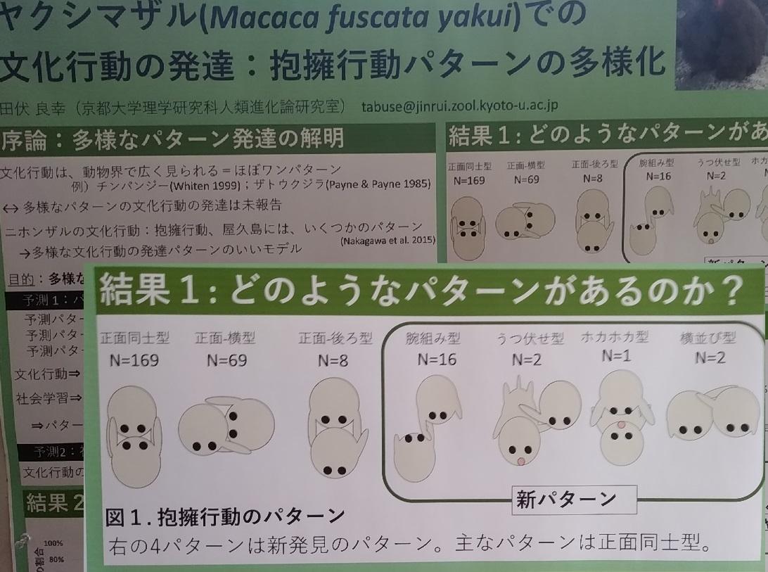f:id:y-6kakudo:20191208194825j:plain