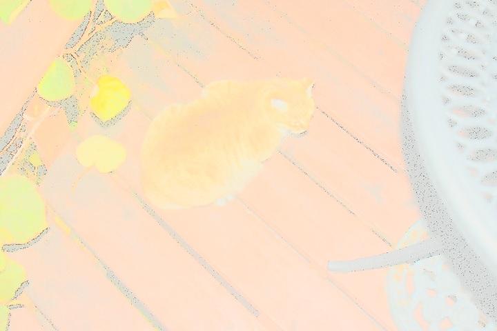 f:id:y-6kakudo:20191215063549j:plain